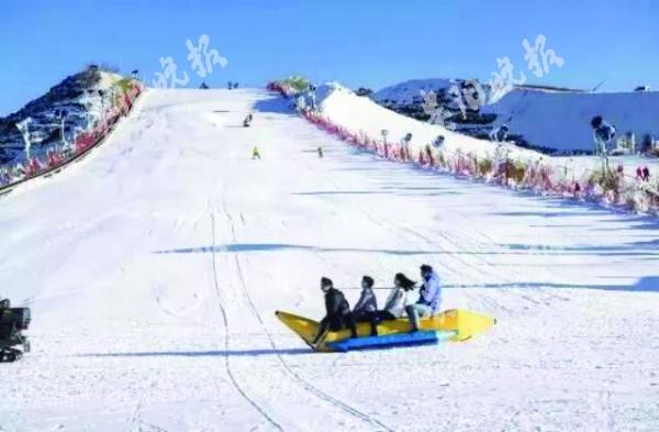 瓦薩滑雪節海報